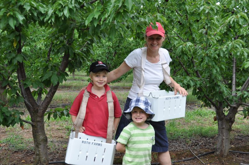 Cherry farming family