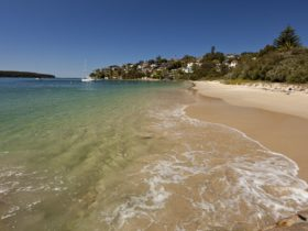 Chinaman's Beach in Mosman