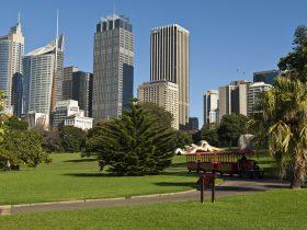 Choo Choo Express, Royal Botanic Gardens, Sydney