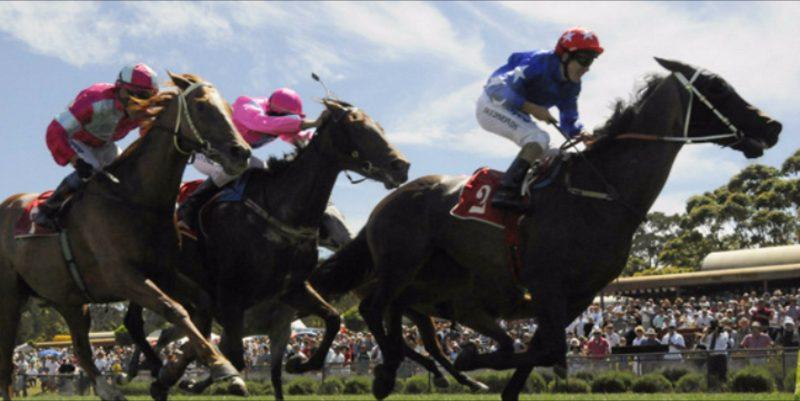 Moruya Races