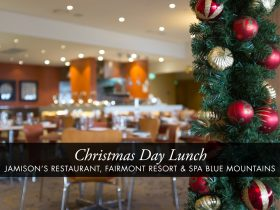 Christmas Day Buffet Lunch at Jamison's Restaurant edit