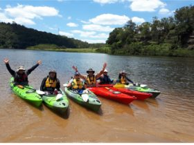 Clarence wilderness adventure ...take a tour in the national parks and along the river