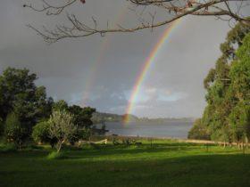View of Clark Bay towards Narooma