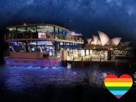 Gay friendly dining cruises