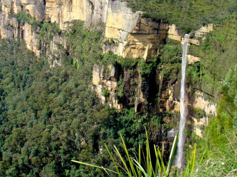 If you're after an energetic walk while taking in the natural beauty of Blue Mountains National Park