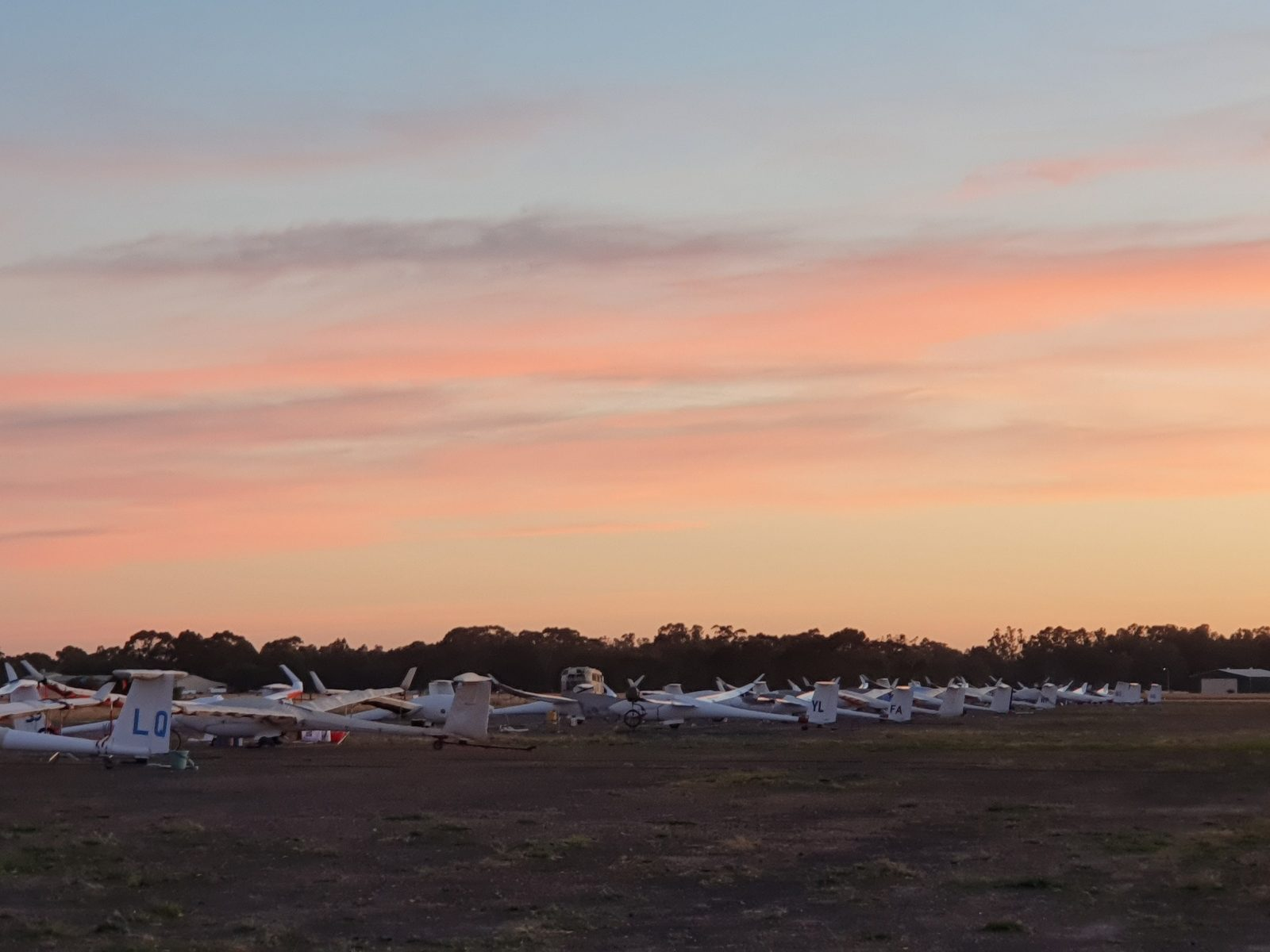 Gliders on the hardstand at Tocumwal