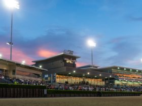 Club Menangle sunset