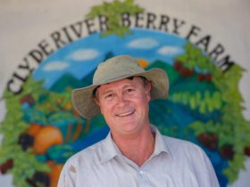 Allan from Clyde River Berry Farm