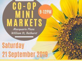 Co-op Spring Mini Markets