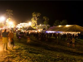Cobargo Folk Festival at night