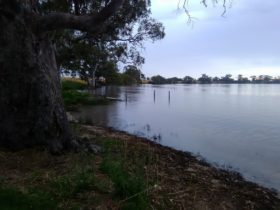 Cockatoo Lake