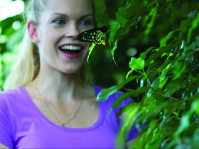 Everyone smiles at the Butterfly House.