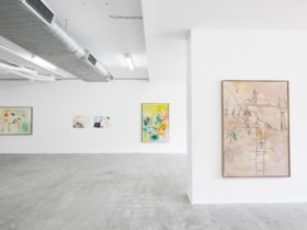 Marc Horowitz - COMA Installation View