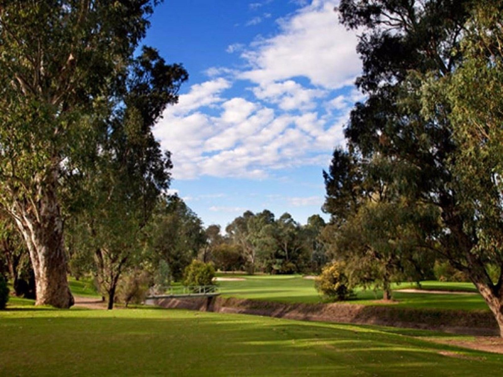 Commercial Golf Course