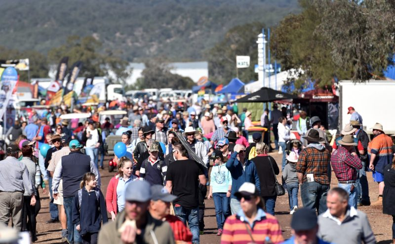 AgQuip Crowds
