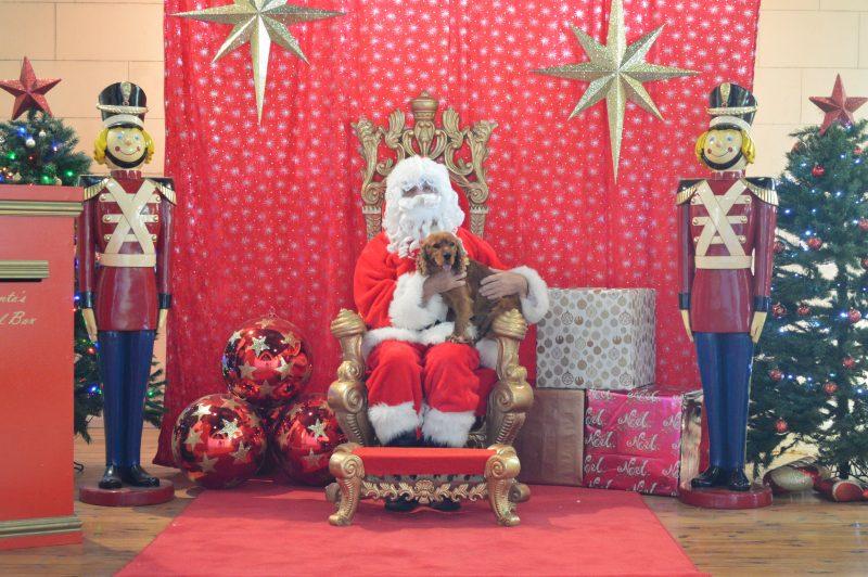 Santa and Brian