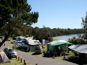 Campers at Congo campground in Eurobodalla National Park. Photo: Christina Bullivant/DPIE