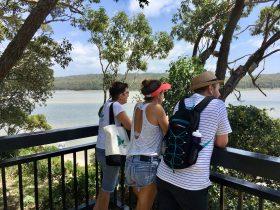 Lake views on Conjola tours