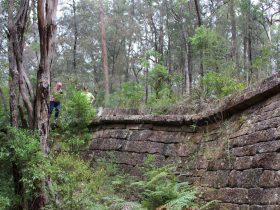 Convict Trail_The Great North Road