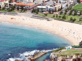 Best views of Coogee Beach
