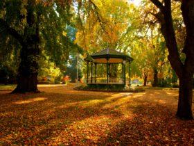 Cook Park Rotunda in Autumn