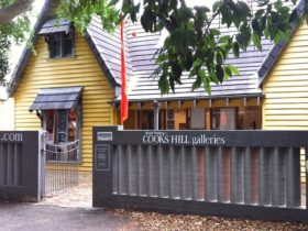 Cooks Hill Gallery