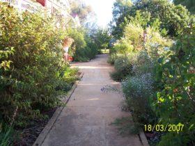 Coromandel House gardens