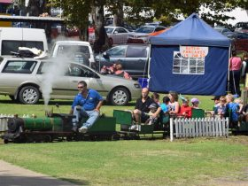 A miniature train pictured in front of stalls