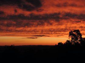 Burnt Sunrise