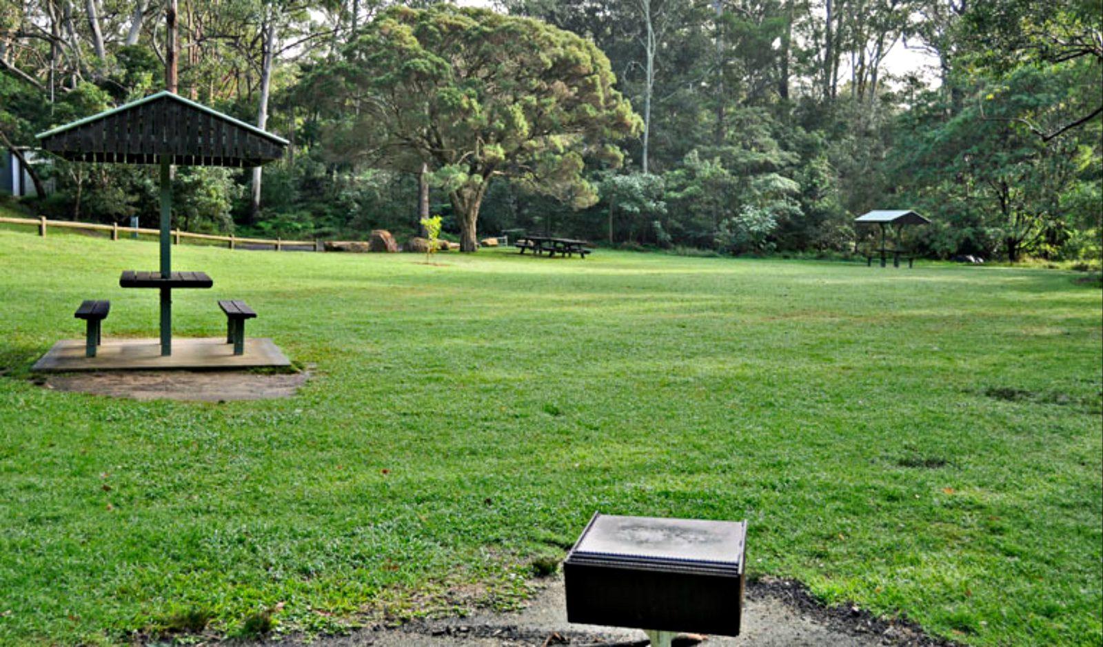Cottonwood Glen picnic area, Lane Cove National Park. Photo: Kevin McGrath