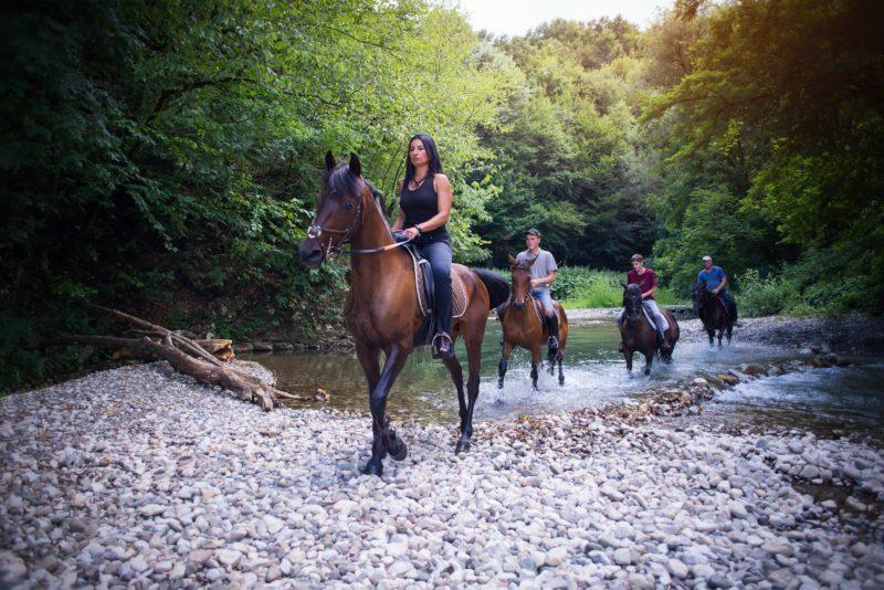 Horseback Riding Tour Mudgee, New South Wales