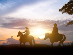 Horseback Riding Mudgee New South Wales