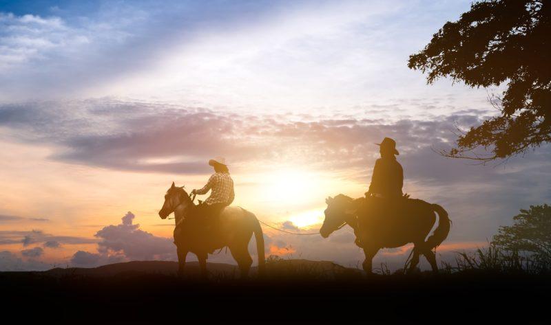 Horseback Riding Mudgee New South Wales
