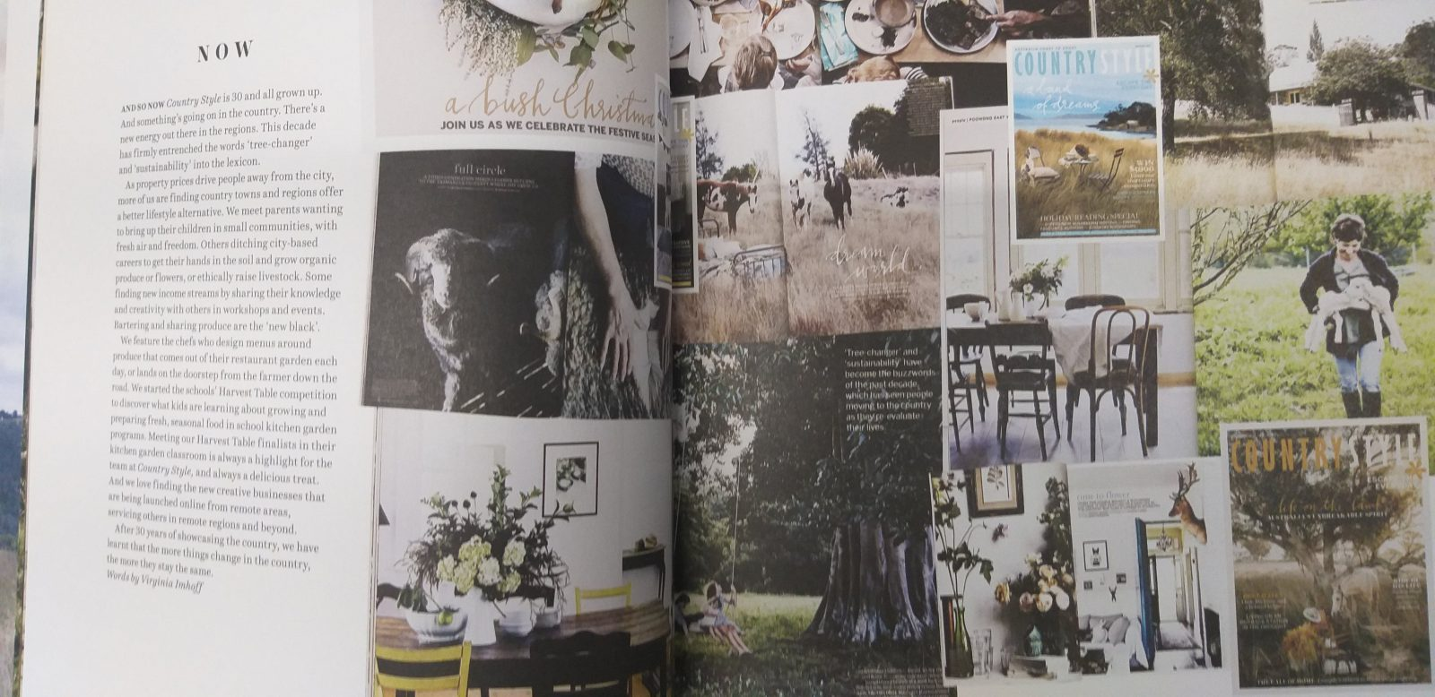 Open pages of a book showing photos of magazine covers, homes and rural scenes.