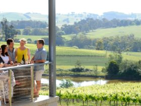 Courabyra Wines cellar door