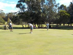 Some of the locals putting on the 7th green