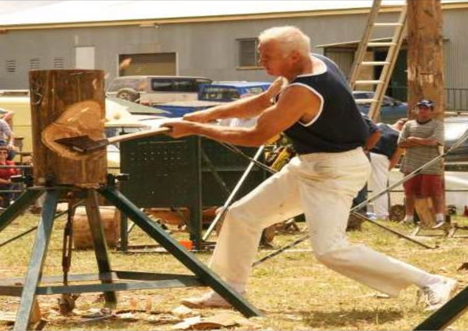 Wood chopping action