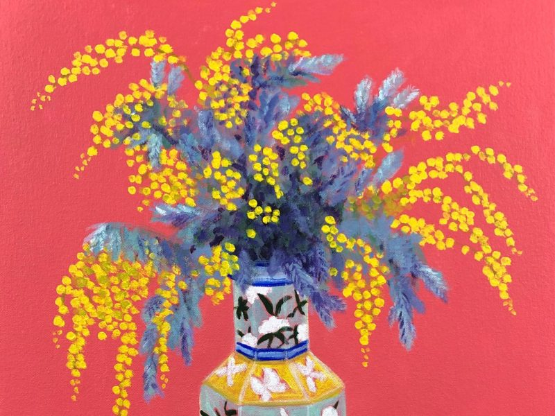 Australian wattle blooms displayed in a Chinese Vase