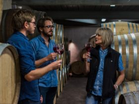 Cupitt's Winery Tour and Tasting Experience
