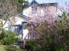 Currawong Cottage Blackheath