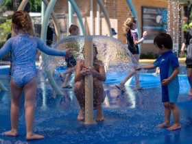 Curry Reserve Water Play Space
