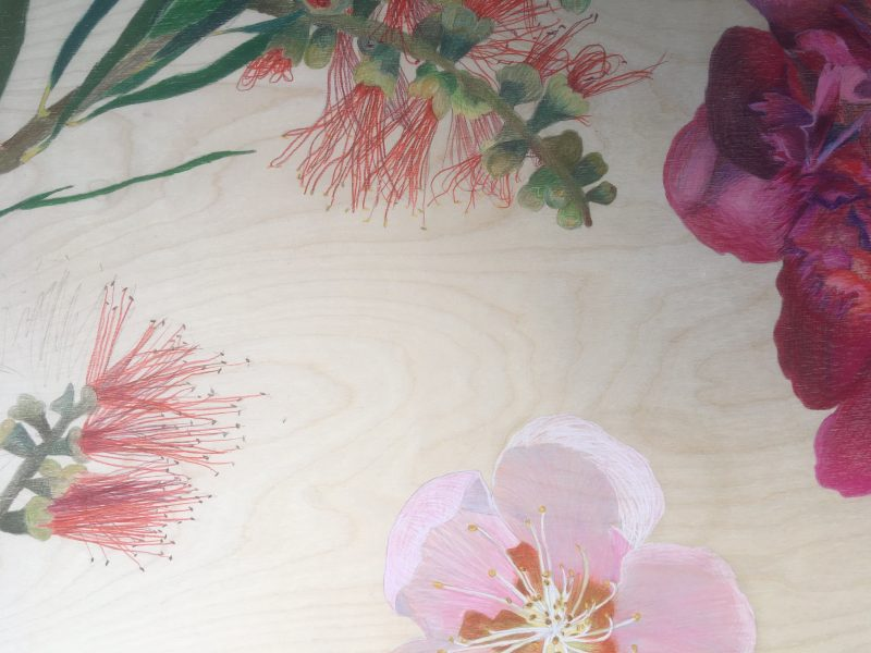 Drawings of pink and red flowers on a light plywood with the wood grain visible.