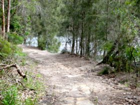 Davidson Park to Stepping Stone Crossing walk. Photo: Shaun Sursok