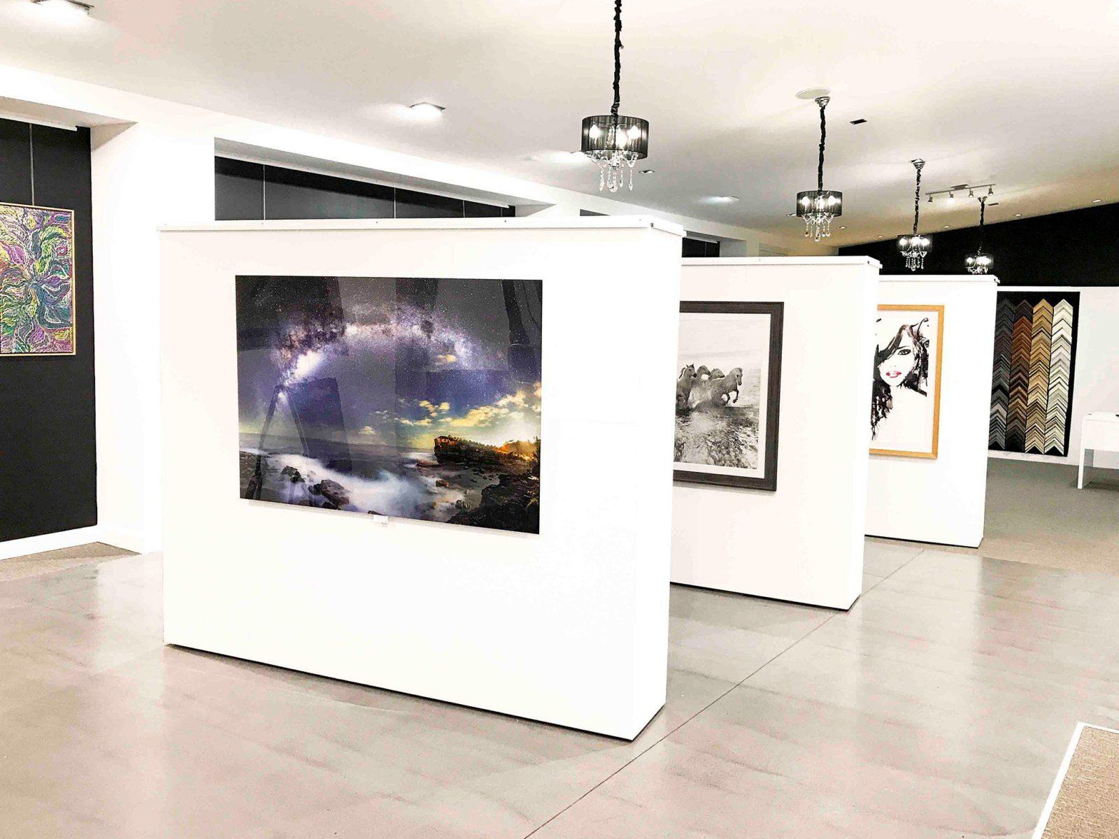 Deluxe Art Gallery