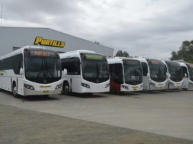 A selection of the Purtill's fleet.