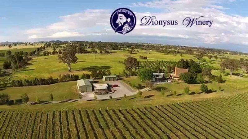 Dionysus Tours