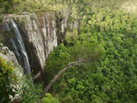 Dorroughby Minyon Falls