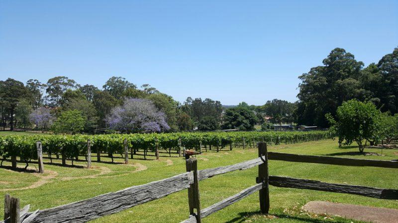 Douglas Vale Historic Homestead and Vineyard