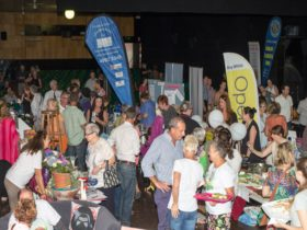 Dungog Business Expo