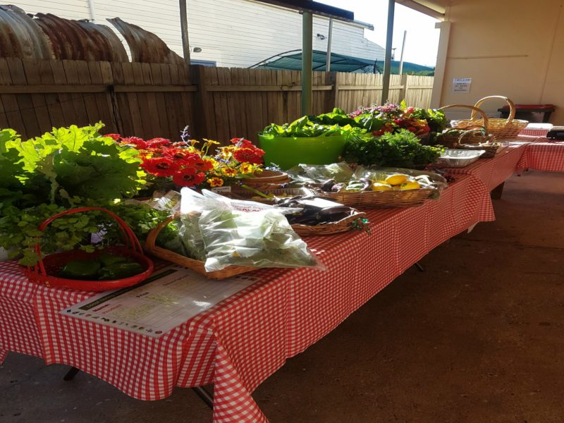Dungog Growers Stall